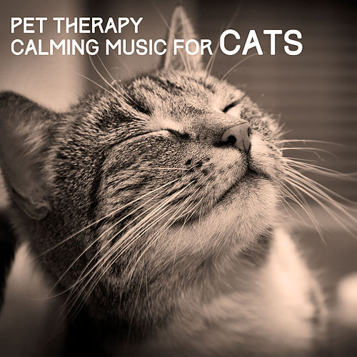 Pet Therapy - Calming Music for Cats by Various Artists