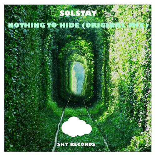 Nothing To Hide by Solstay