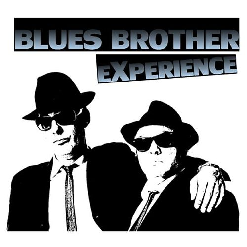 Blues Brother Experience de Various Artists