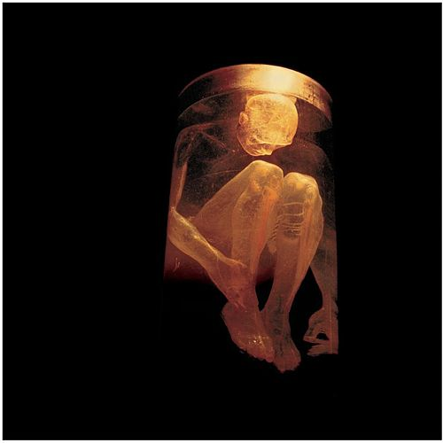 Nothing Safe - The Best Of The Box by Alice in Chains