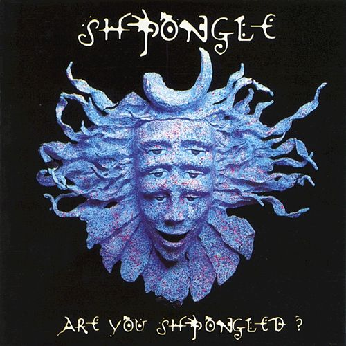 Are You Shpongled? von Shpongle