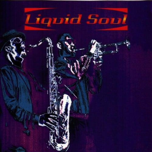 Liquid Soul (ARK 21) by Liquid Soul