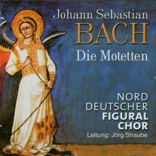 Johann Sebastian Bach: Die Motetten von Jörg Straube Norddeutscher Figuralchor