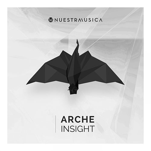 Insight by Arche