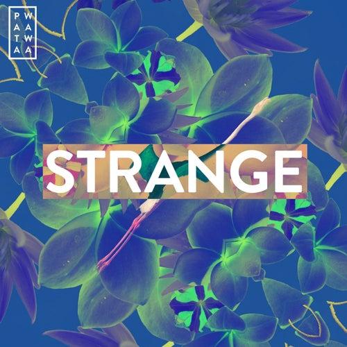 Strange by Patawawa