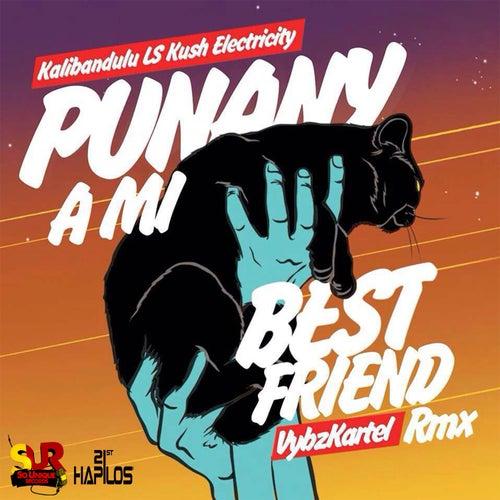 Punany a Mi Best Friend (Kalibandulu x Kush Electricity Remix) by VYBZ Kartel