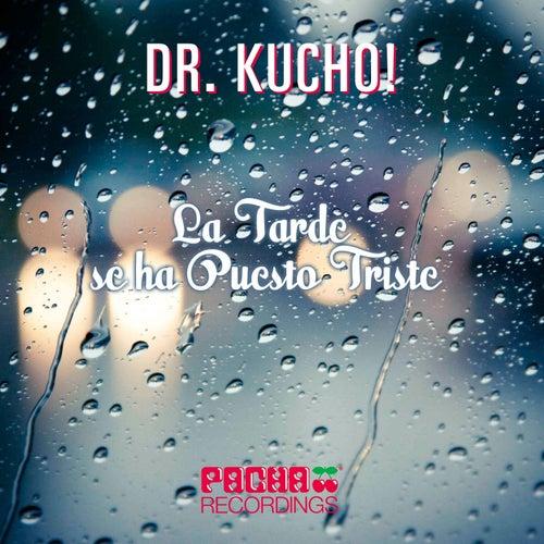 La Tarde Se Ha Puesto Triste von Dr Kucho!