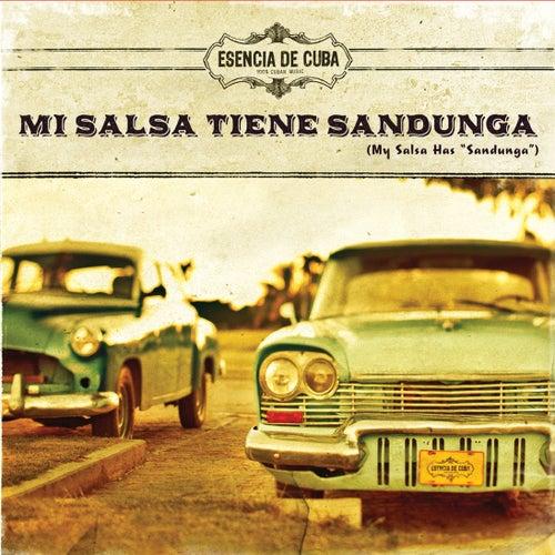 Mi Salsa Tiene Sandunga (My Salsa Has Sandunga) de Various Artists