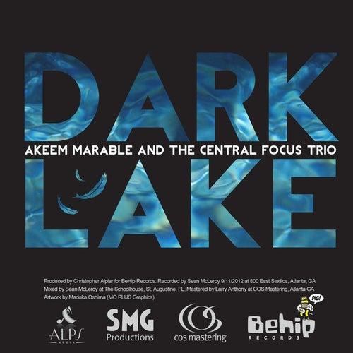 Dark Lake by Akeem Marable