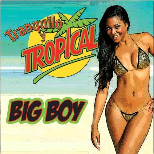 Tranquilo y Tropical de Big Boy