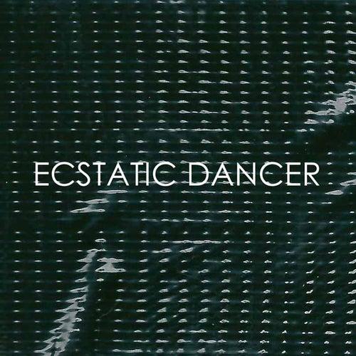 Ecstatic Dancer de Fujiya & Miyagi