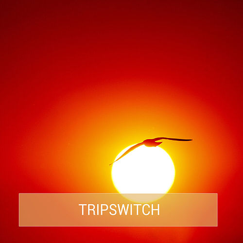 Bones Single von Tripswitch