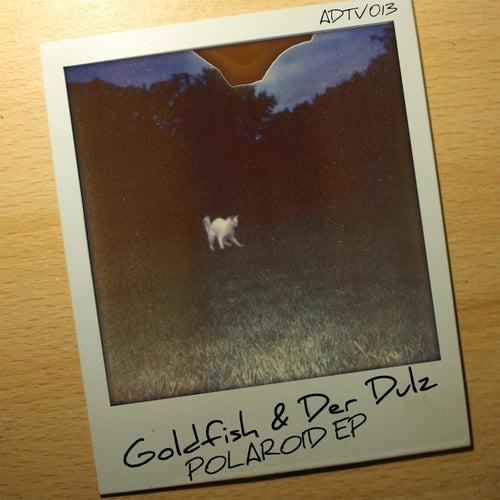Polaroid de Goldfish