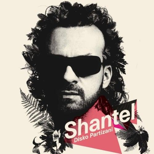 Disko Partizani de Shantel