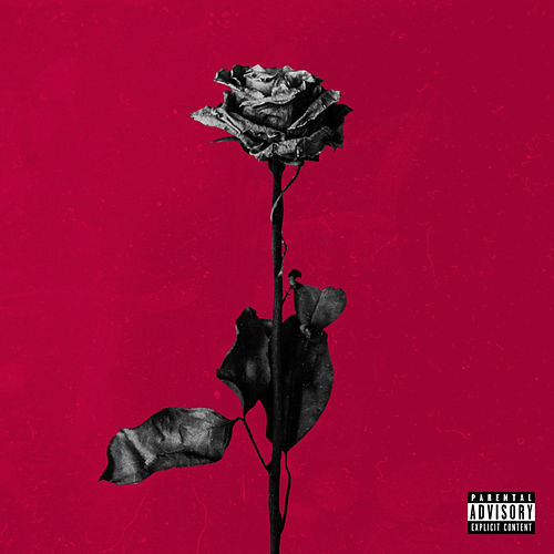 deadroses di blackbear
