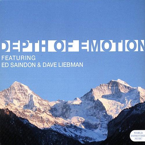 Depth Of Emotion de Dave Liebman