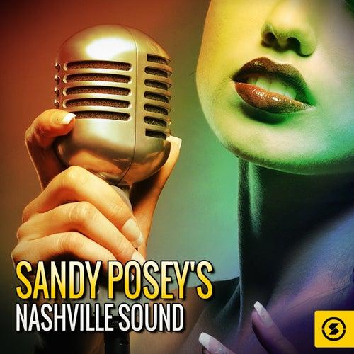 Sandy Posey's Nashville Sound de Sandy Posey