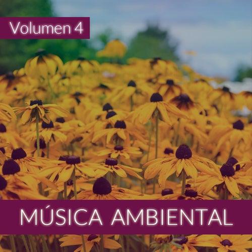 Música Ambiental (Volumen 4) von The Sunshine Orchestra