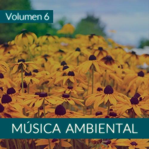 Música Ambiental (Volumen 6) von The Sunshine Orchestra