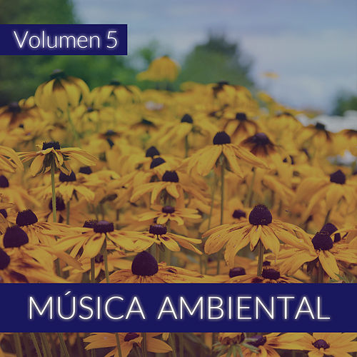 Música Ambiental (Volumen 5) von The Sunshine Orchestra