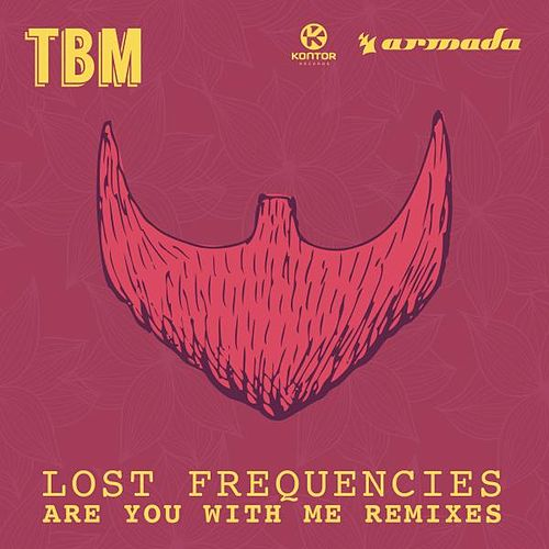 Are You With Me (Remixes) von Lost Frequencies