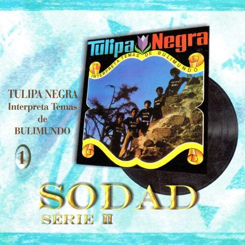 Interpreta Temas de Bulimundo (Sodad Serie 2 - Vol. 1) by Tulipa Negra