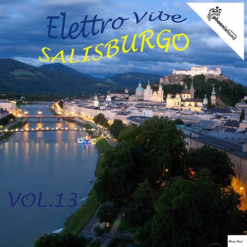 Elettro Vibe Salisburgo, Vol. 13 by Various Artists