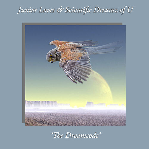The Dreamcode by Various Artists
