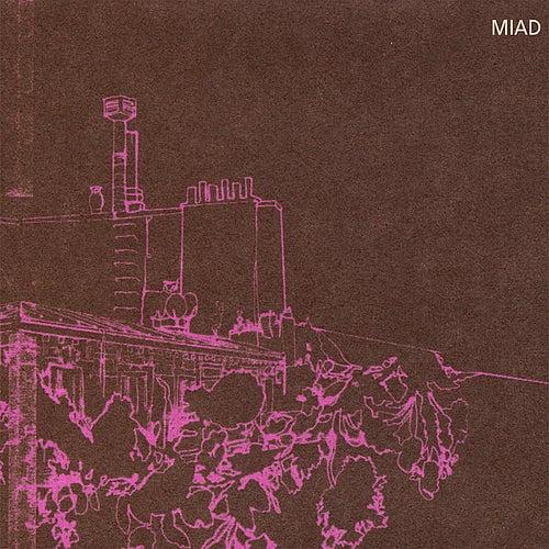 Miad de Various Artists