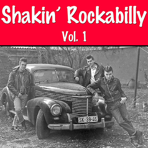 Shakin' Rockabilly, Vol. 1 by Various Artists