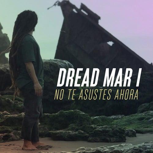 No Te Asustes Ahora by Dread Mar I