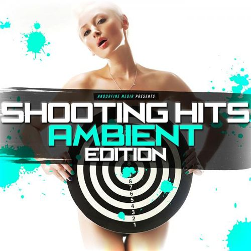 Shooting Hits - Ambient Edition von Various Artists