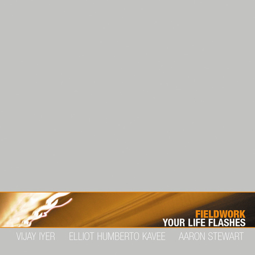 Your Life Flashes by Fieldwork