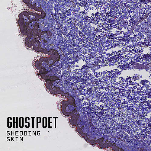 Shedding Skin de Ghostpoet