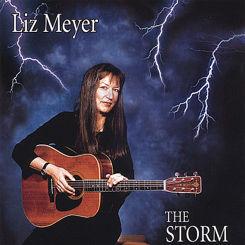 The Storm by Liz Meyer