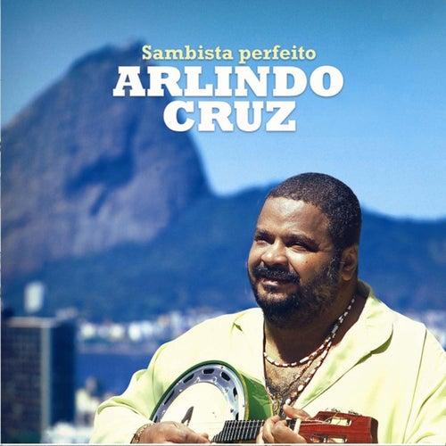 Sambista Perfeito de Arlindo Cruz