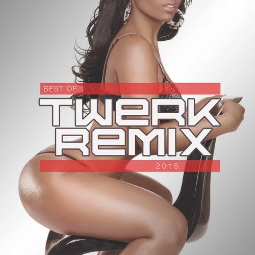 Best of Twerk Remix 2015 (Booty Shake Music) by Various Artists