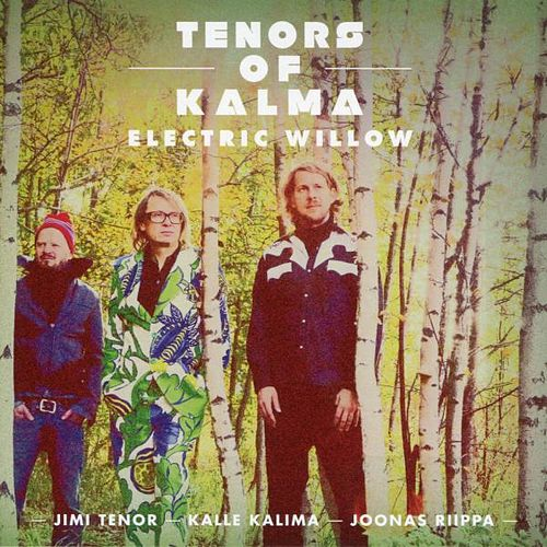 Electric Willow von Jimi Tenor
