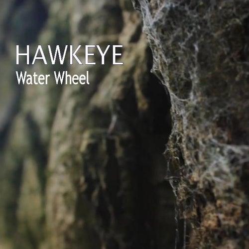Water Wheel von Hawkeye