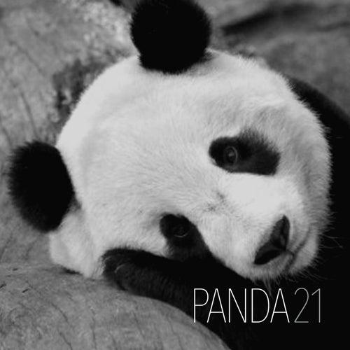 Panda21 by Various Artists