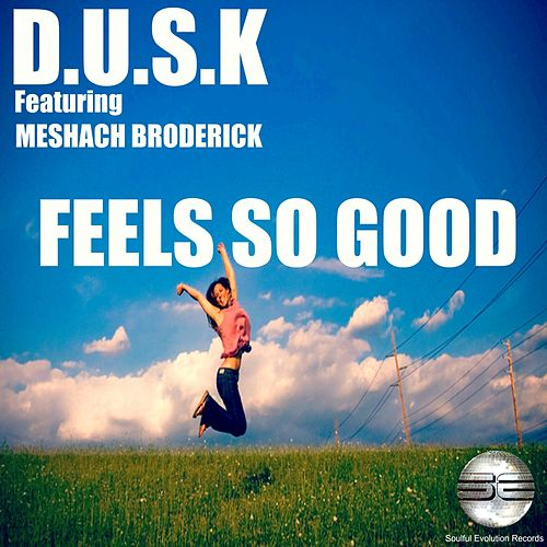 Feels So Good (feat. Meshach Broderick) by D.U.S.K