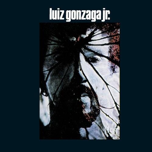 Luiz Gonzaga Jr - Gonzaguinha de Gonzaguinha