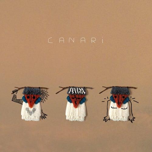 Canari de Canari