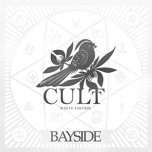 Cult White Edition by Bayside
