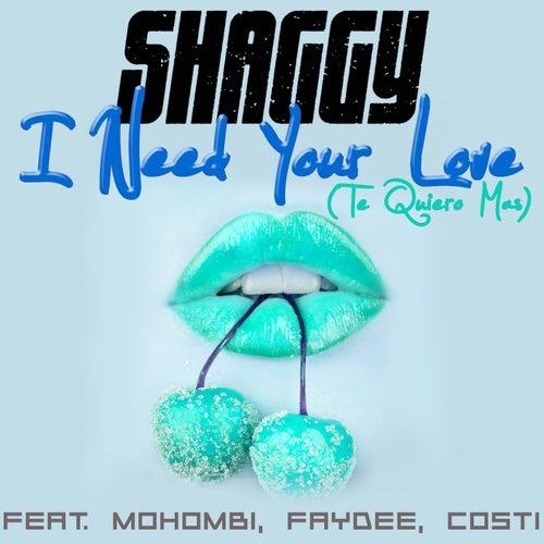 I Need Your Love (Te Quiero Mas) di Shaggy