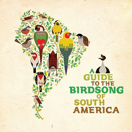 A Guide to the Birdsong of South America de Various Artists