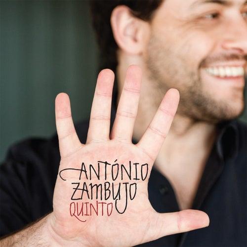 Quinto de António Zambujo