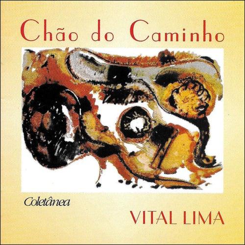 Chão do Caminho by Vital Lima