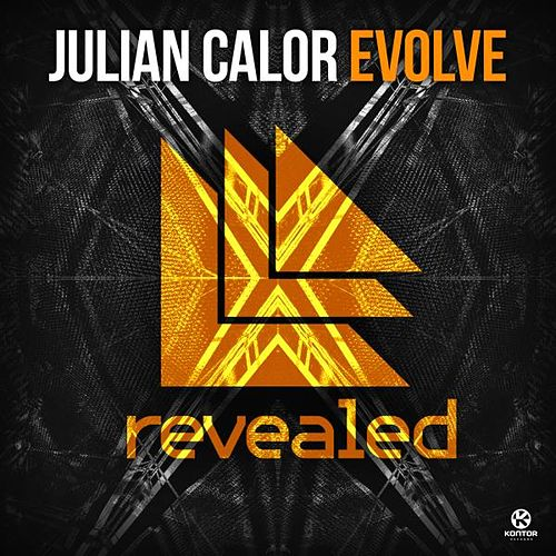 Evolve von Julian Calor