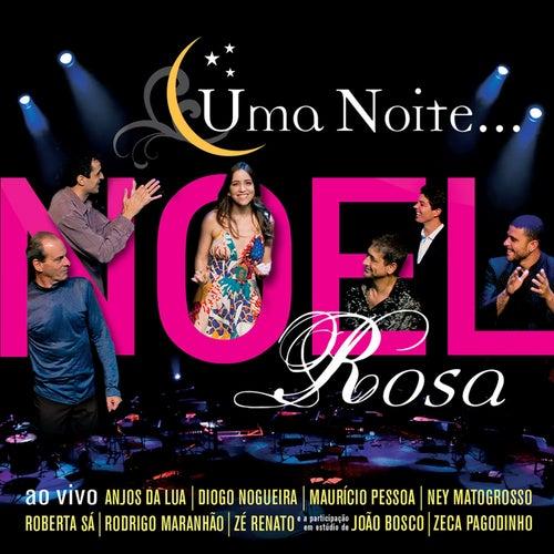 Uma Noite Noel Rosa de Various Artists